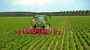agricoltura 2