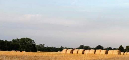 agricoltura-611x407